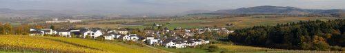 Panorama Bekond. Blick auf Bekond, Neubaugebiet, Industriepark,Vetconcept, Wald und Wiesen